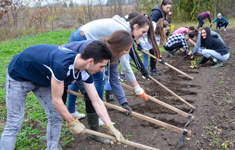 Od edukacije do akcije – sadimo drveće